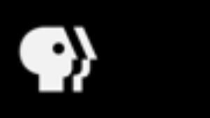 The PBS logo