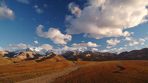 Denali_National Parks | Denali